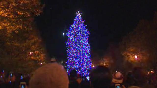 christmas-tree-lighting